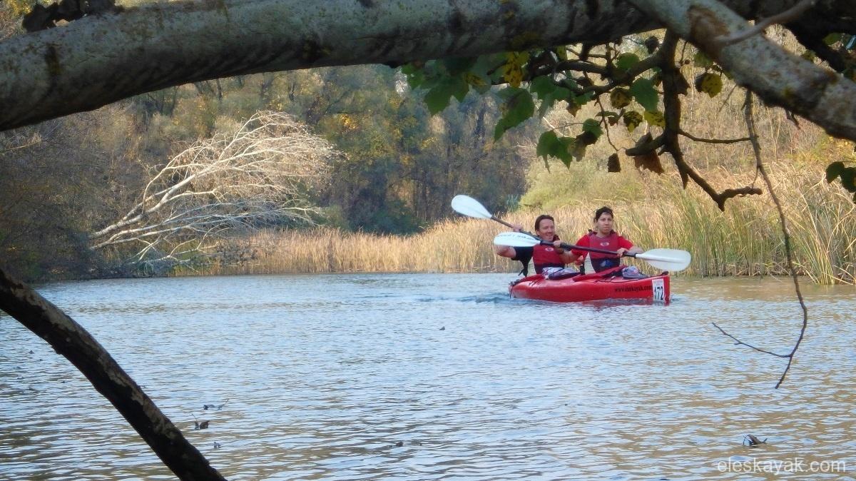 Tisza tó vízitúra